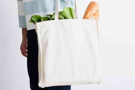 Armenian Prime Minister calls for  quitting polyethylene and  switching to a cloth bag